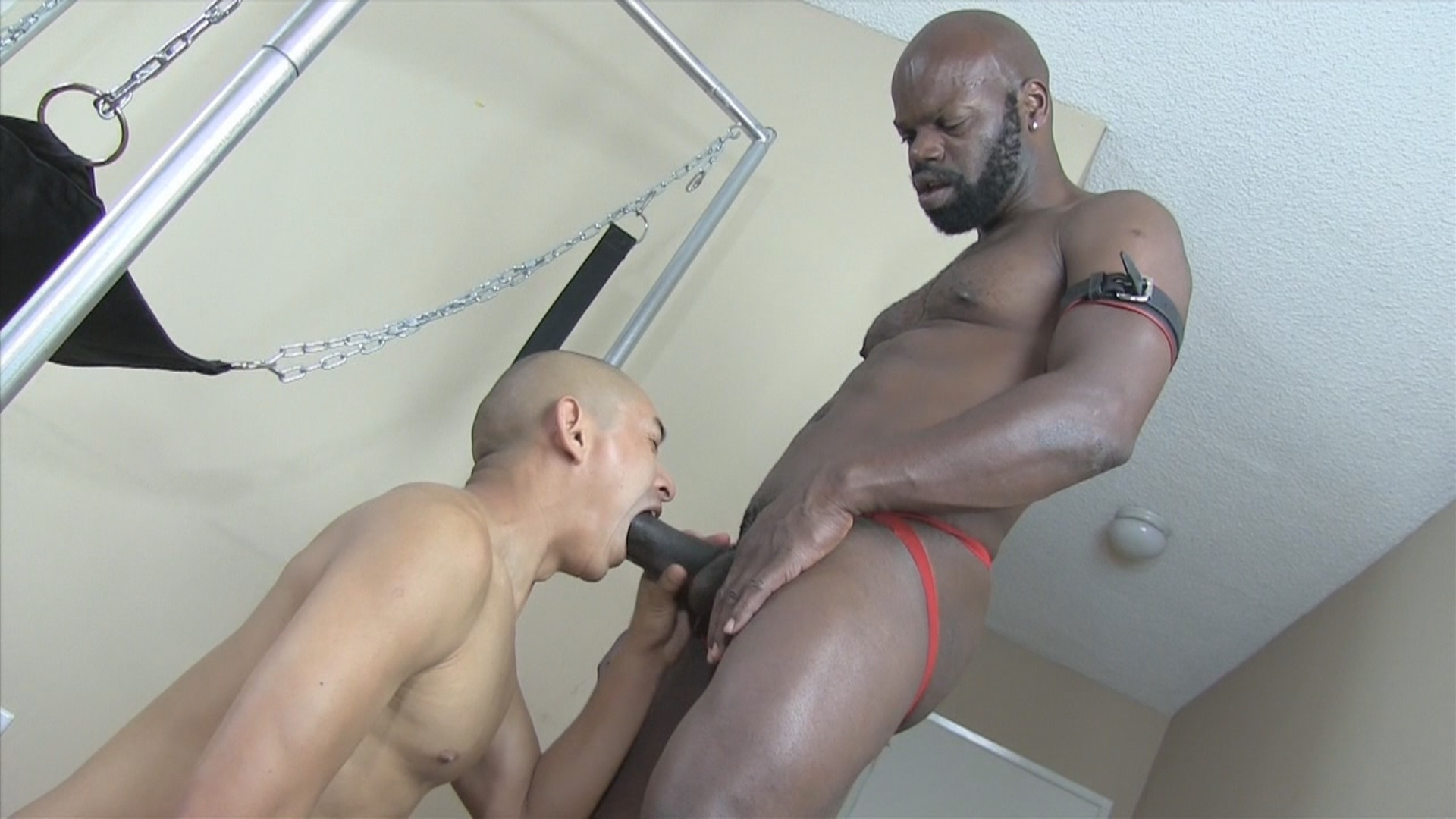 Hairy japanese pussy rideing cock