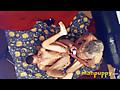 Man Puppy: HARDCORE BAREBACK GAYSEX - Tristan Sweet - Richard Lennox