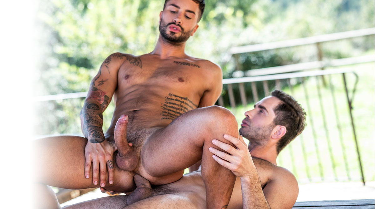 Andrea Suarez Gay Porn Xvideos andrea suarez & michael lucas - gay - andrea suarez bottoms for