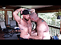 Muscle Bear Porn: Liam Angell, Will Angell & Hunny Bear