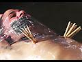 James - Mummified stud tortured