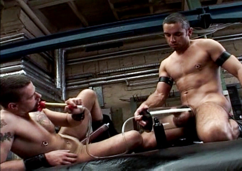 Gust recommend best of piss gay fetish force