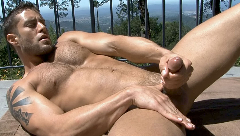 gay boy solo escort uomo