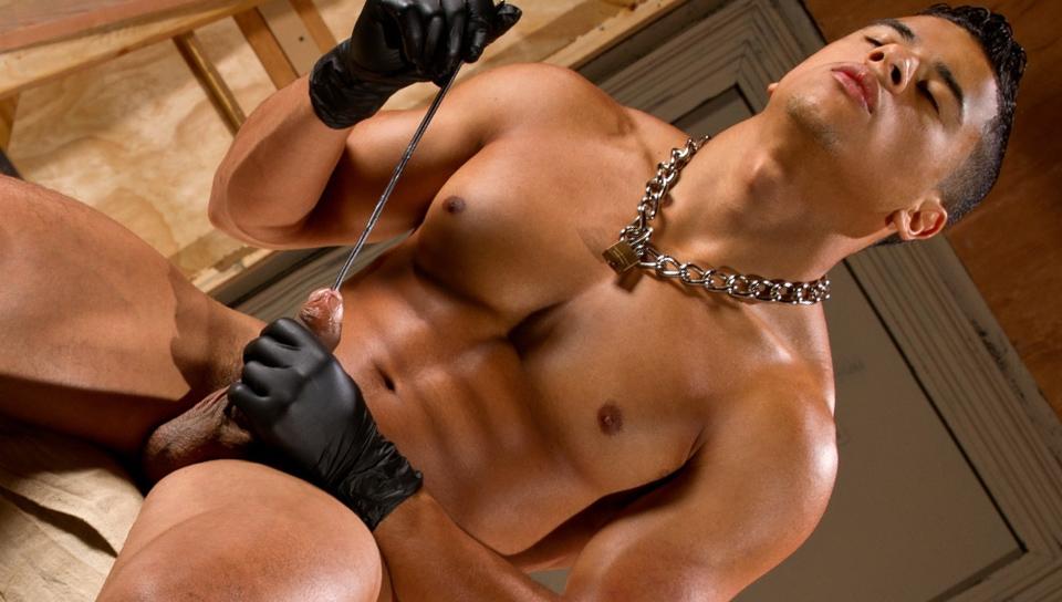 sounding Gay sounding Group Sex Huge Dick Jerk Off Jessie