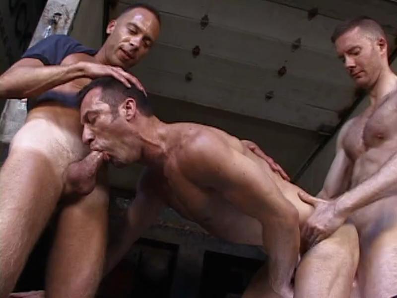 Luscious gay trio ass banging