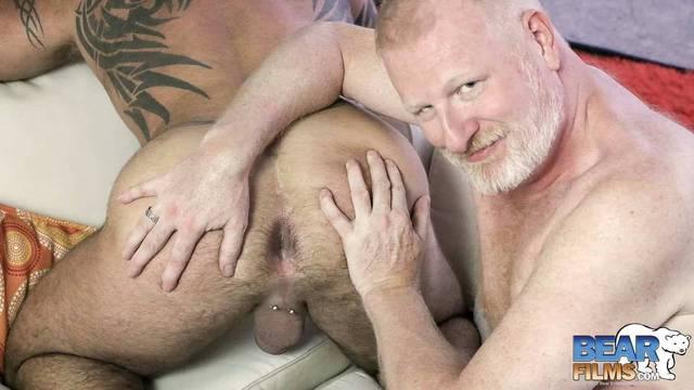 Free Gay Bear Films