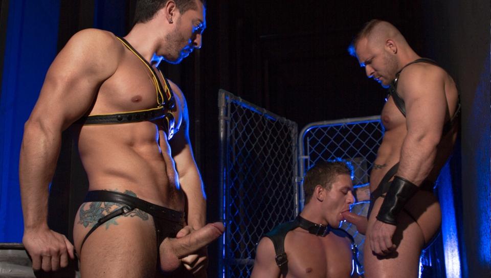gay square dance art