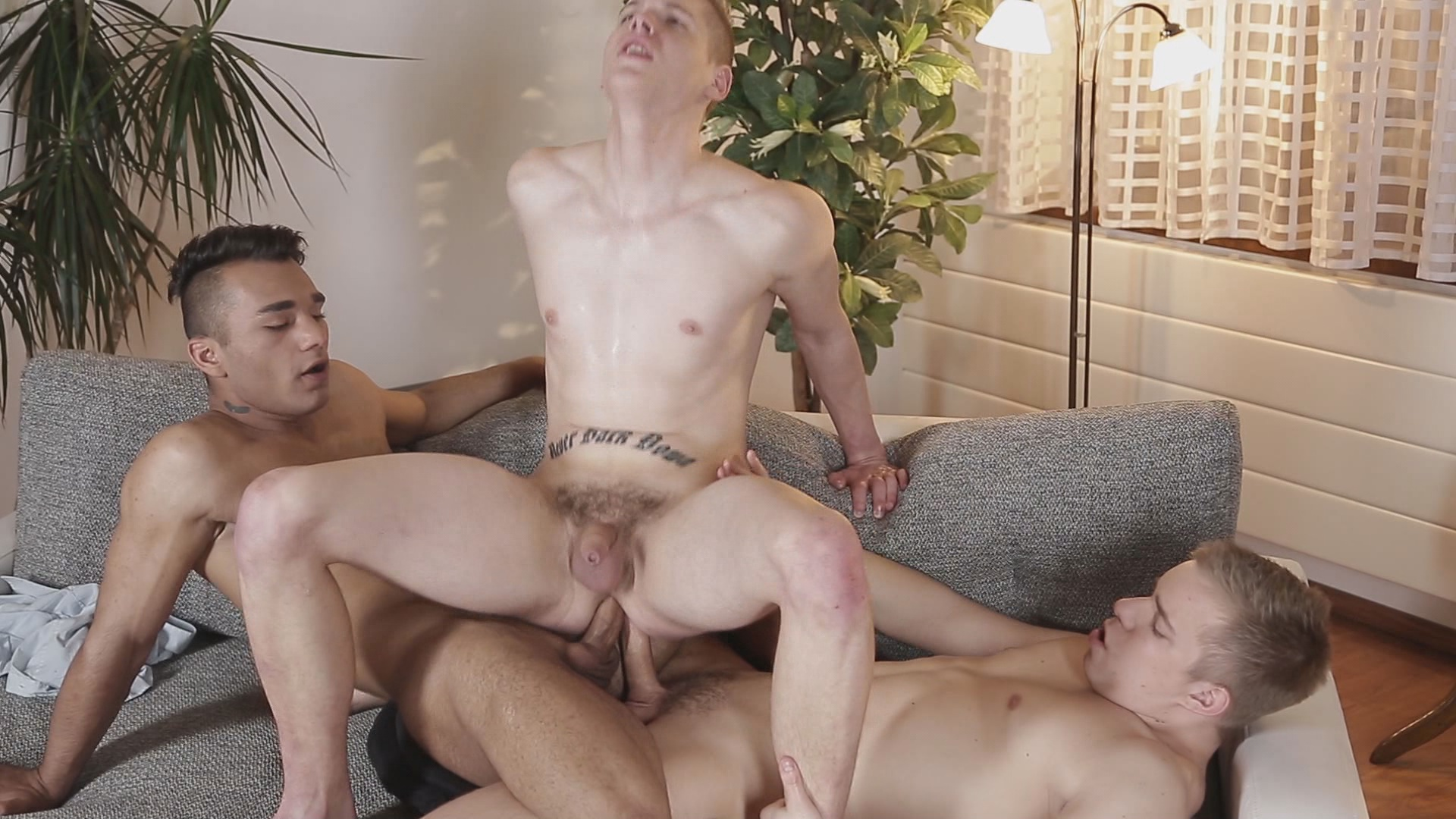White collar male asshole massage