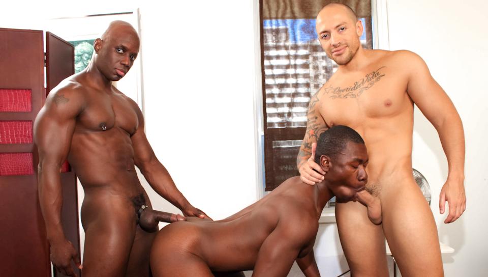 Gay Black Men Videos Download Free