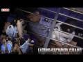 GDude-JP: Eating Security Guard