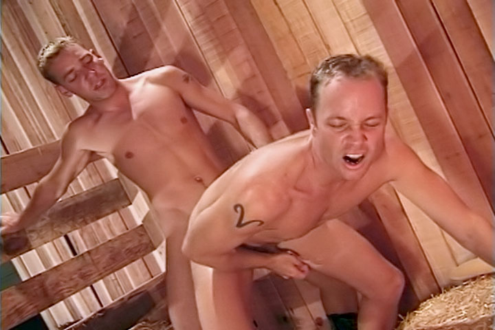 Naked sexting pics tits