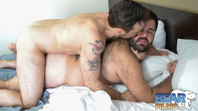 Black Bear Gay Men Porn
