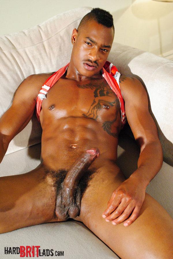 Tyler Johnson Gay Porn Star