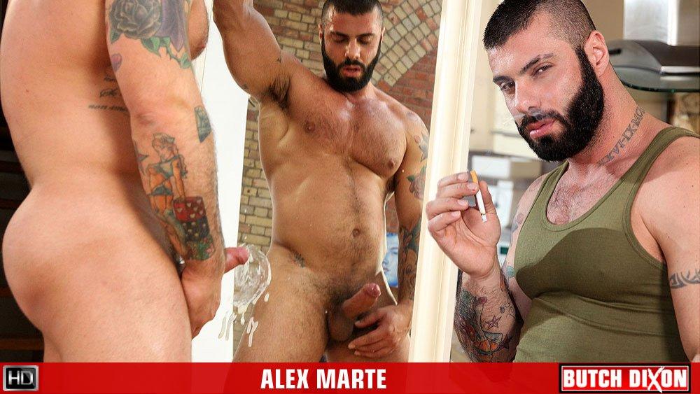 escort x alex marte gay